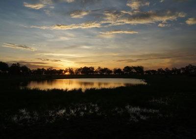 Botswana (17)