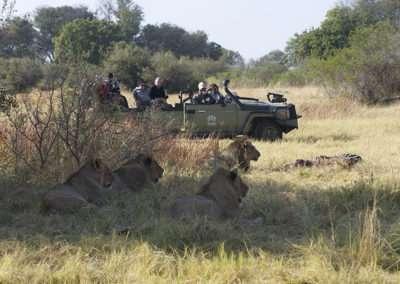 Botswana (9)