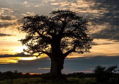 Botswana36