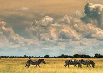 Botswana38