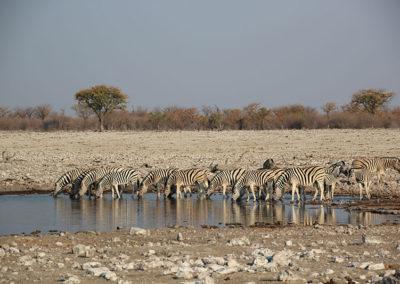Namibia (10)