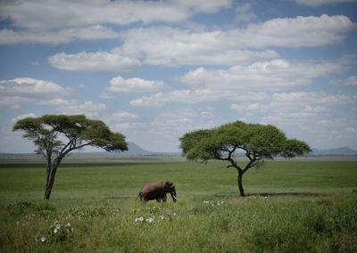 Tanzania27
