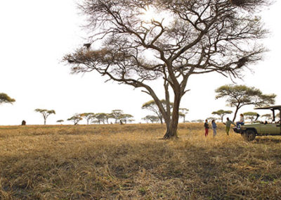 Tanzania35