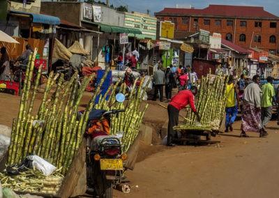 Uganda (36)